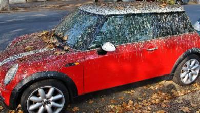 Photo of Palomas: El peor enemigo de un auto estacionado en la calle
