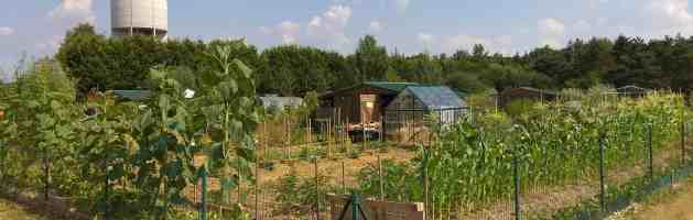Visite du jardin fin juillet
