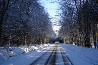Snow Covered Winter Road Through Woods