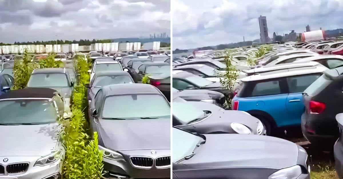 Посмотрите на «кладбище» с тысячами автомобилей BMW и MINI.  Приобрели здесь новые - Мотор