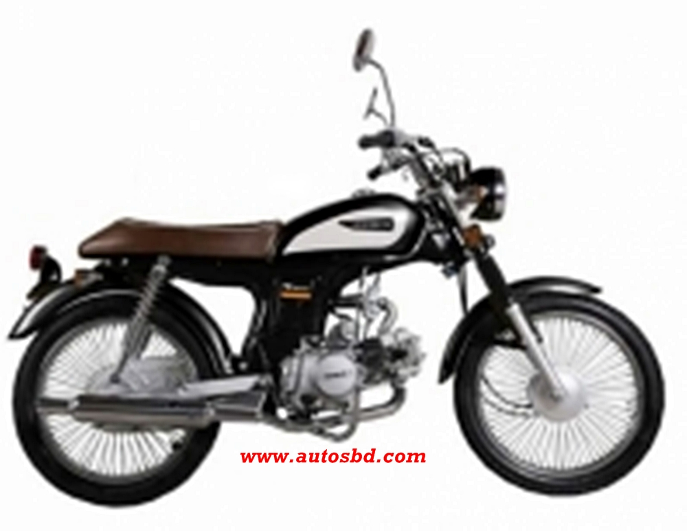 Victor-R Classic 100 Motorcycle Specification