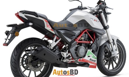 Benelli TNT 25 Motorcycle Specification
