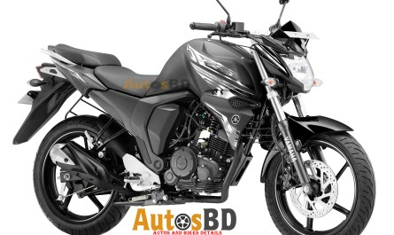 Yamaha FZS Dark Night Edition