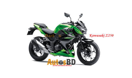Kawasaki Z250 Specification