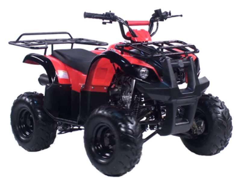 Краткий обзор квадроцикла IRBIS ATV110U