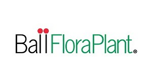 ballfloraplant