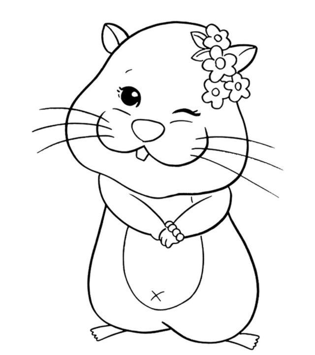 Coloriage hamster gratuit à imprimer et colorier