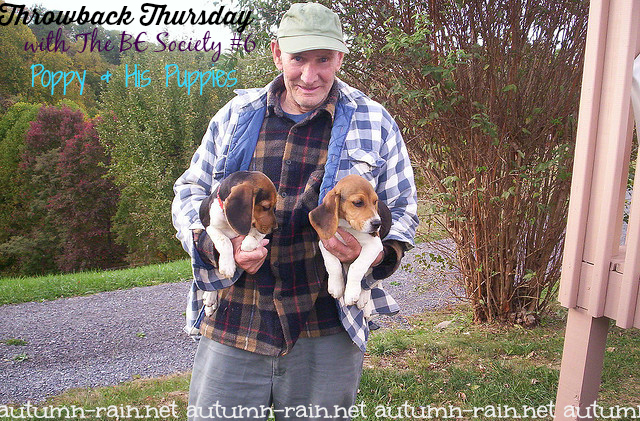 Throwback Thursday @TheBESociety # 6 With Linky- Poppy & His Puppies