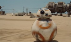 BB-8 is rolling though camp.