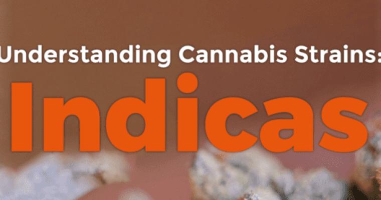 Understanding Cannabis Strains: Indicas