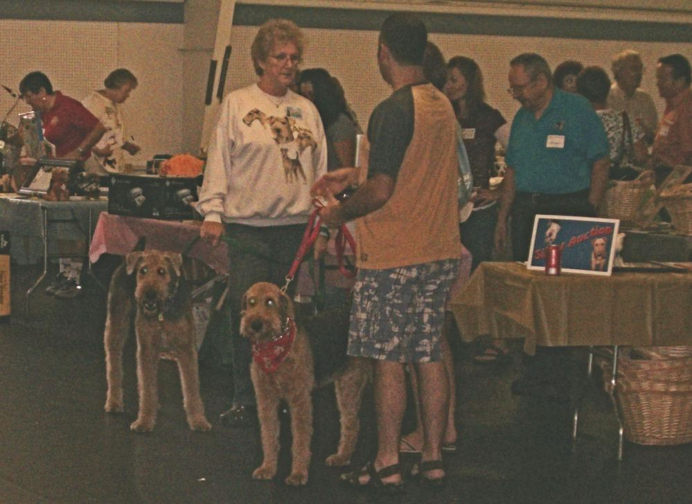 Airedale for a Day! (4/6)