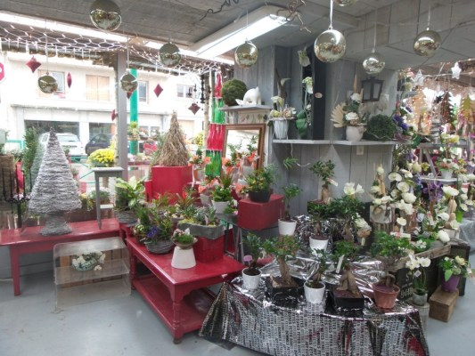 interieur magasin (6)