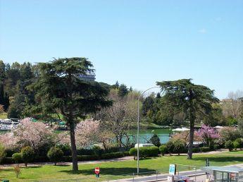 800px-2013-04-11_roma_parco_lago_eur