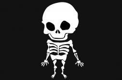 Le système osseux