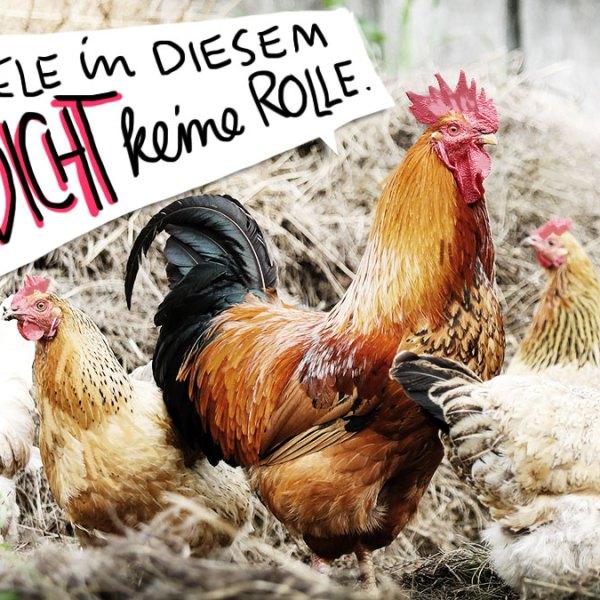 Einen Hahn gibt es in diesem auxkvisiten Gedicht nicht.