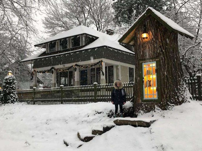 #tree #library #snow #Sharalee