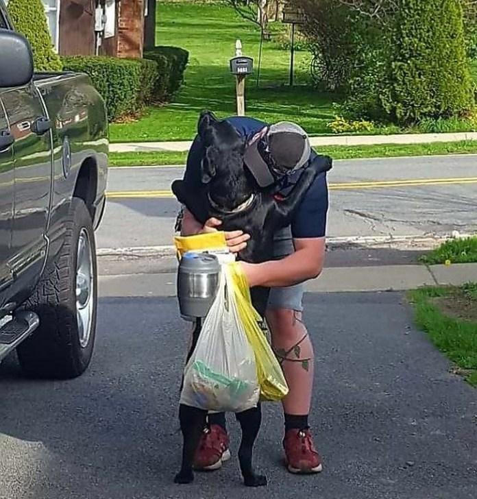 guy hugging his dog