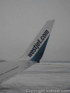 A look at our winglet