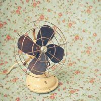 Para refrescar: ventiladores