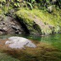 Magnifique plan d'eau