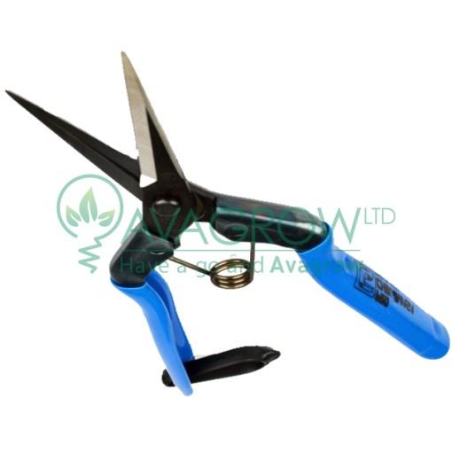 Chickamasa Scissors a