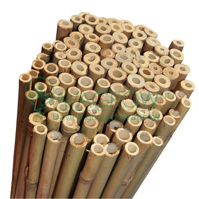 Plantit Bamboo Sticks