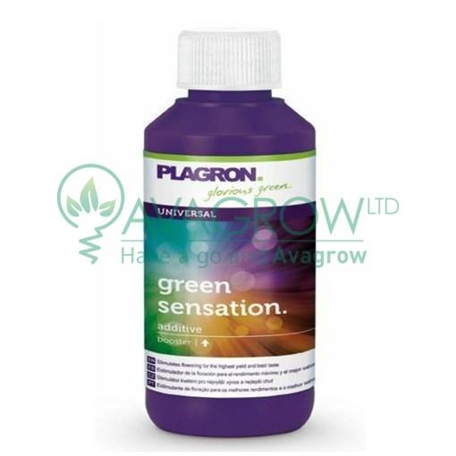 Green Sensation 500ML