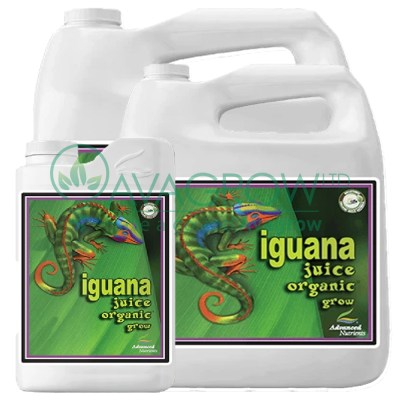 Iguana Juice Grow Family