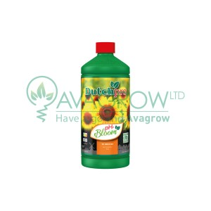 PH - Bloom 1 L