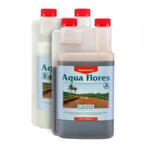 aqua flores