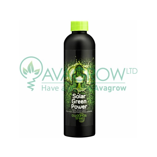 Buddhas Tree Solar Green Power 250ML