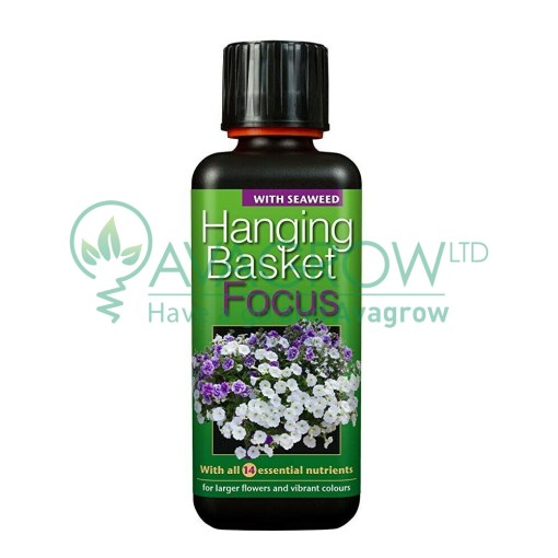 Hanging Basket Focus 300ML