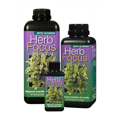Herb Focus
