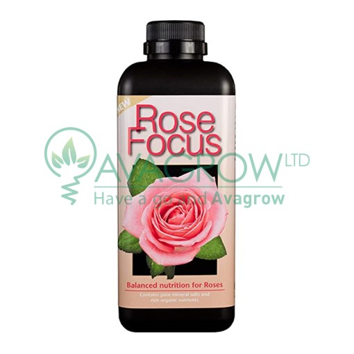 Rose Focus 300ML