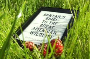 Bunyan's Guide to the Great American Wildlife