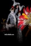 Shino_bay_white_party_ava_live_radio_6