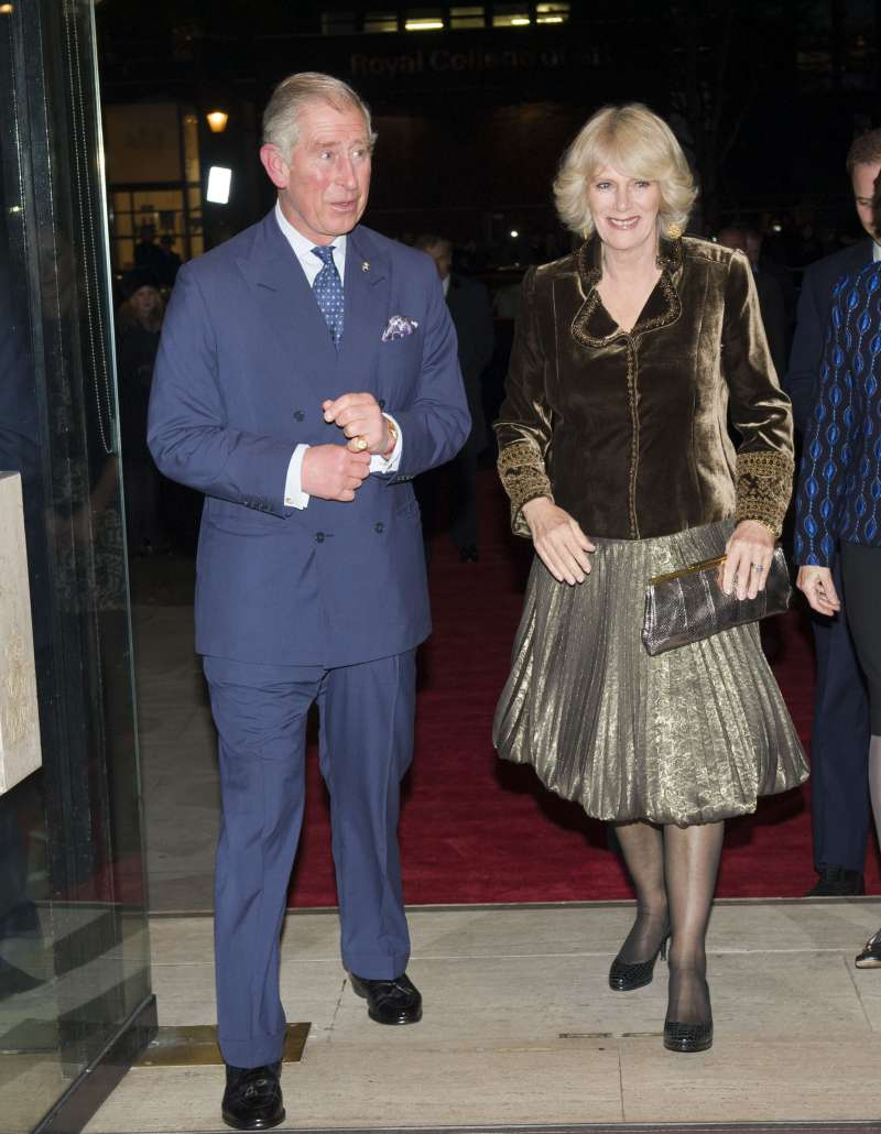 Have William And Harry Finally Accepted Camilla Parker ...