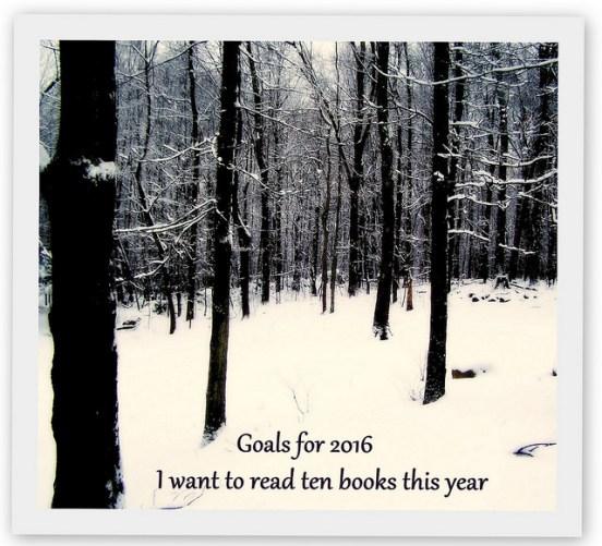 Avalon&Kelly Goals 2016