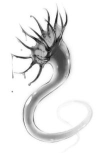 Shadow Leech