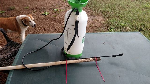 My latest back saving invention. Made a handle for the sprayer wand. Strip ties and scrap PVC.