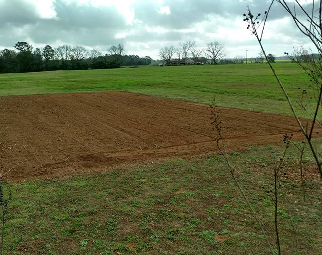 Oh, the promise and potential of a freshly tilled field!  What good food will be produced here? How many people will be fed from this small field?  Stay tuned!