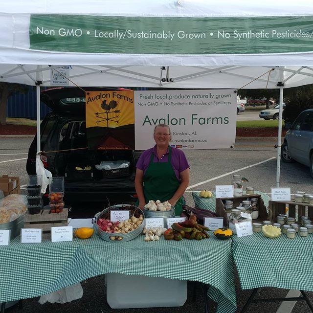 Poplar Head farmers market in Dothan is open! Come see the goodies we have today -  Fresh bread, fresh eggs, beets, salad turnips, Japanese eggplants, garlic, herb salts, beautiful Italian frying peppers, blackberries, and a few other surprises!  All naturally grown with no synthetic pesticides or fertilizers. Yum!
