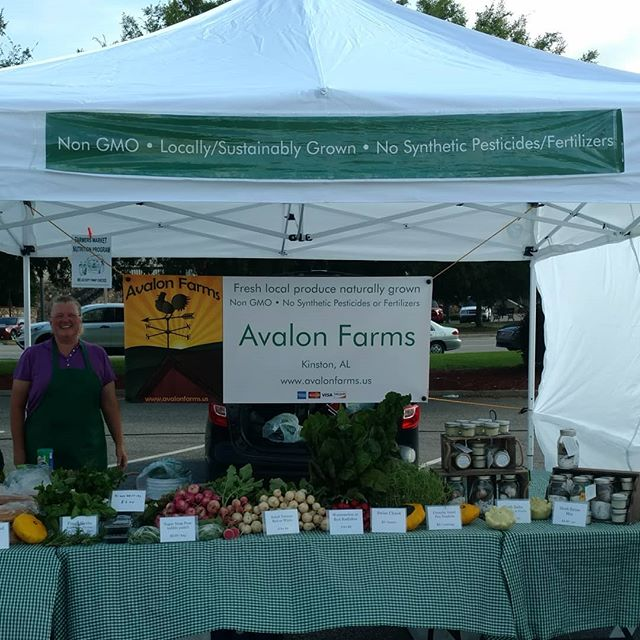Up bright and early for the opening day of Poplar Head Farmers Market in Dothan. Stop by and say hi!