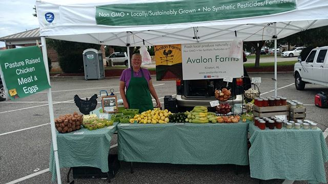 Morning! A nice cooler day here at Poplar Head farmers market in historic downtown Dothan. Come on down and see the goodies this week!