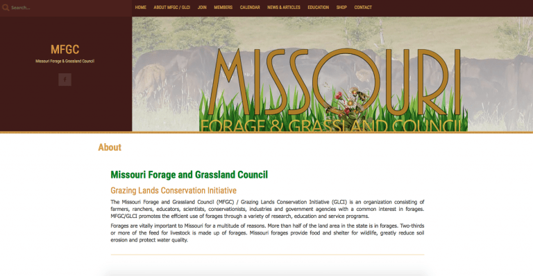 Avalon Web Designs | Professional Website Design & Marketing Services for MoFGC.org