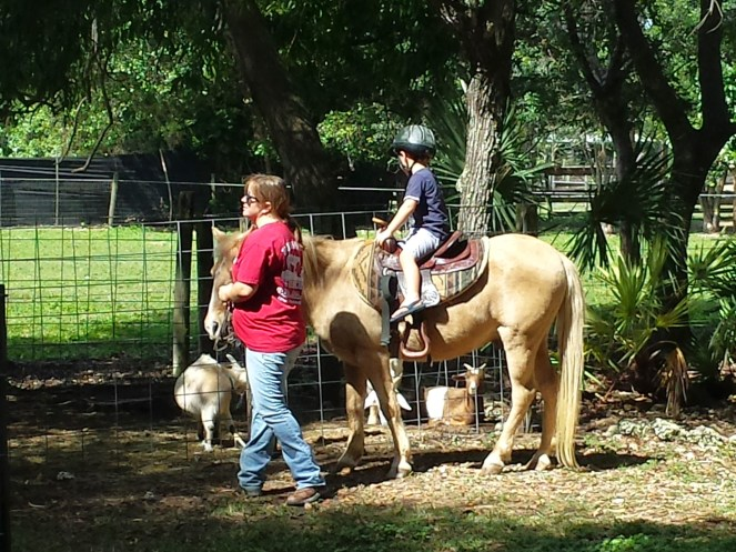 redland riding academy 4