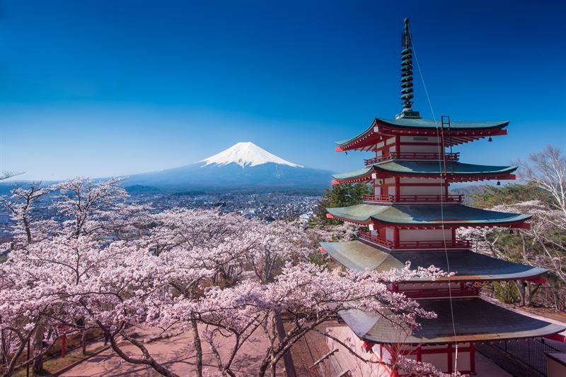 Wyjazd do Japonii - to trzeba wiedzieć!
