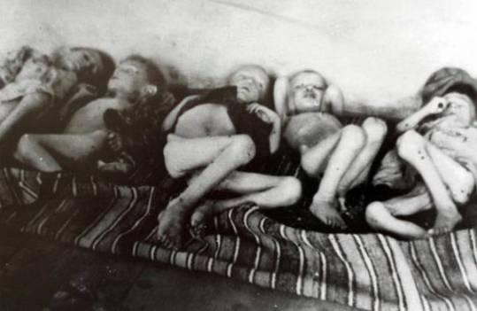 Bambini sfiniti dalla fame nel campo di concentramento fascista di Rab-Arbe 1942-1943.  Archivio Fotografico del Museo di storia contemporanea di Lubiana