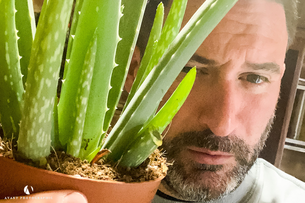 Phil, holding an aloe vera plant to be used in a product shoot.