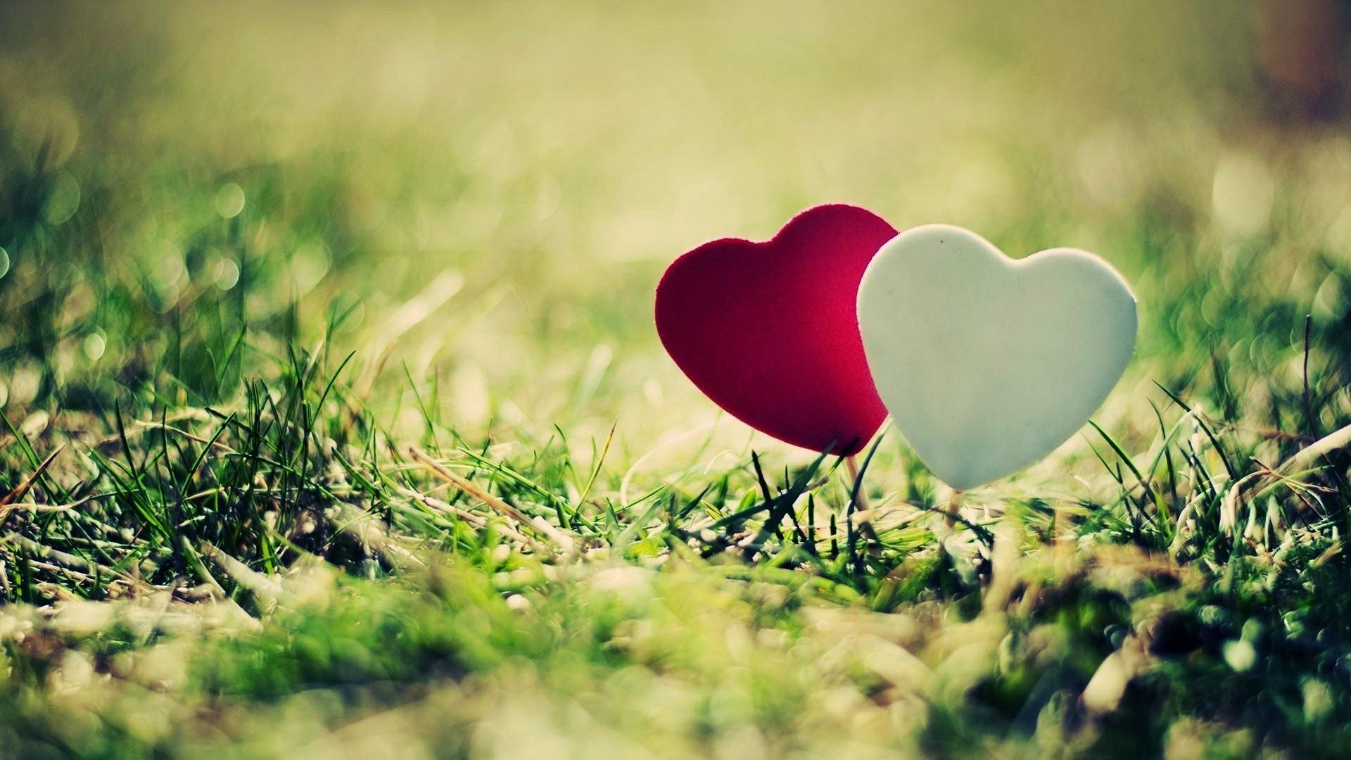 Love Heart Wallpapers Hd Wallpaper 1920x1080